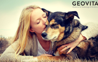 Dogs and EMF radiation can cause health issues
