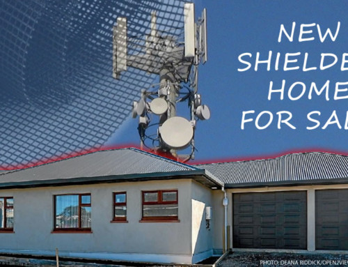 GEOVITAL Radiation shielded hemp home for sale