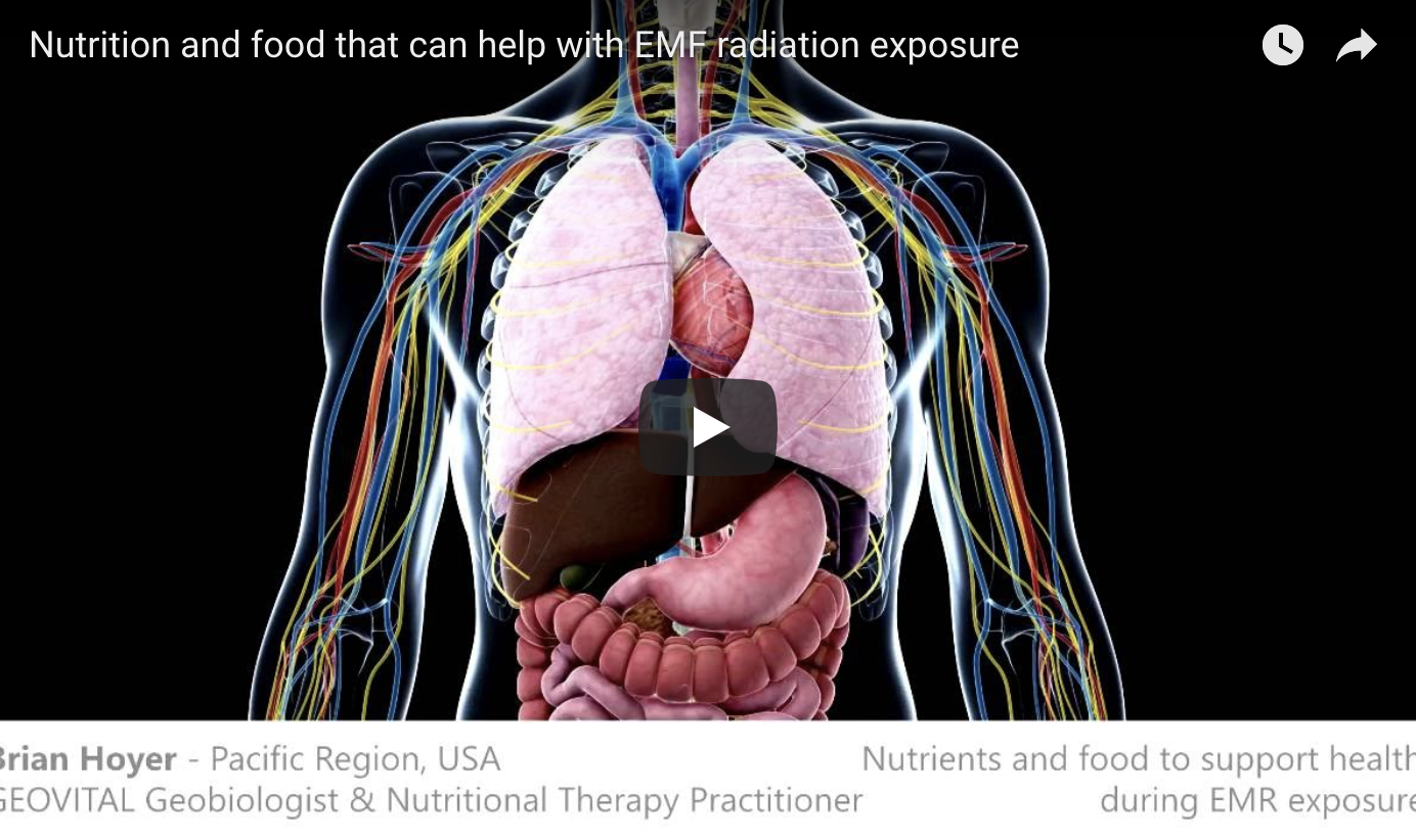 Video Nutrition And Food That Can Help With Emf Radiation Exposure En Geovital Com En