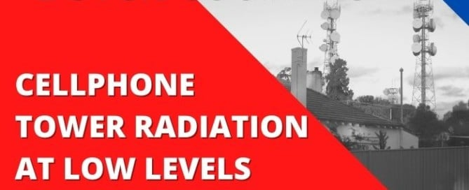 Dutch Court Ruling says Cellphone Tower radiation at low levels can't be ignored when considering the available research